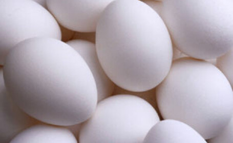Arges: consilierii si primarul s-au batut cu oua la sedinta de consiliu!