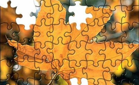 Un milion de piese de puzzle, noul record mondial