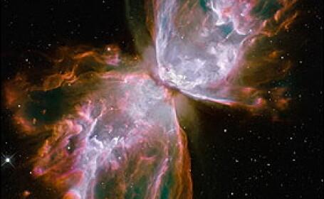Hubble - aripi de fluture