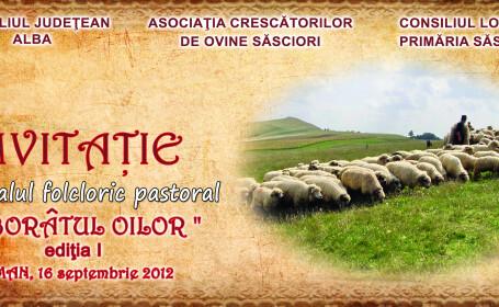 Pastorii din Alba isi coboara oile de la munte pentru iernat