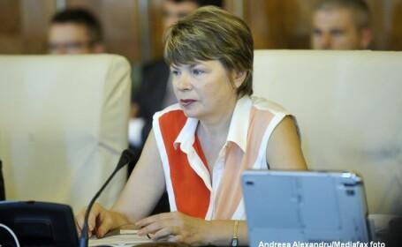 Mona Pivniceru: S-ar putea sa amendez procedura de selectie a procurorilor