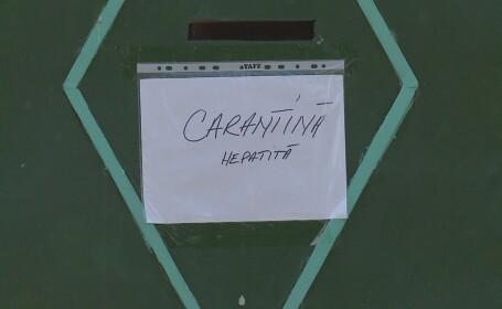 carantina hepatita