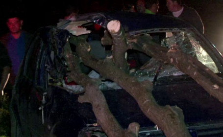 Decapitat de un bustean, in masina. Accident grav in Bistrita, din cauza unei carute plina cu lemne lasata in drum