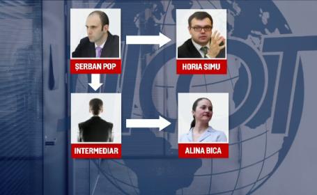arestare Alina Bica - grafica