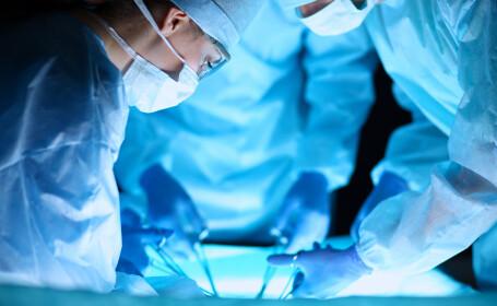 medici shutterstock