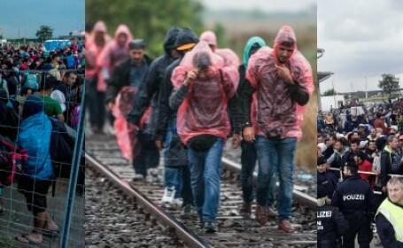cover refugiati
