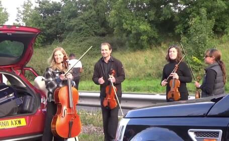 muzicieni trafic
