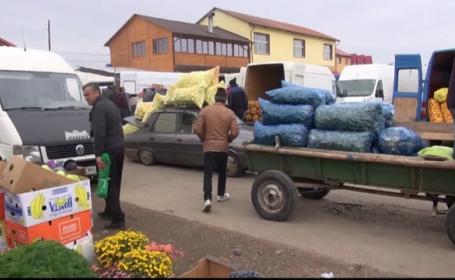 Recolta bogata a scazut pretul legumelor, dar agricultorii sunt nevoiti sa arunce tone intregi. \