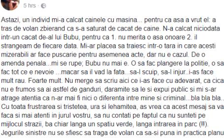 Incident șocant relatat pe Facebook: câine călcat intenționat cu mașina în București