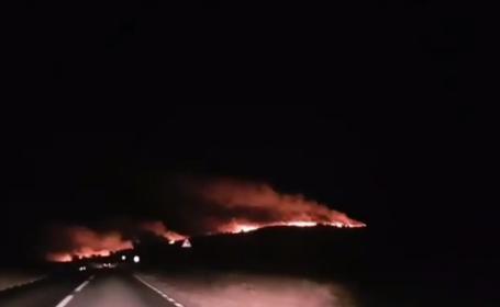 Incendiu uriaș în Tulcea, la 200 de hectare. Focul s-a văzut de la Galați