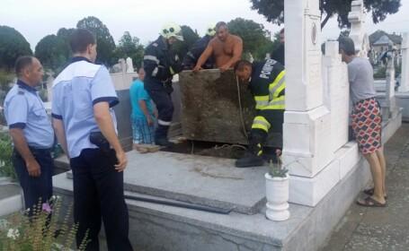 câine îngropat de viu Timiș