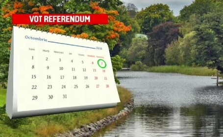 referendum familie