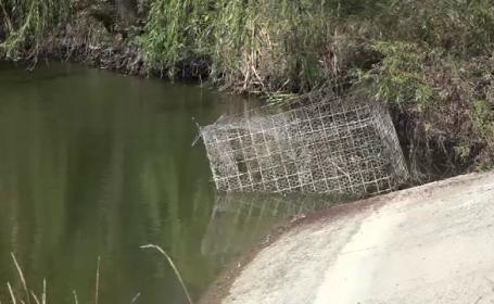 Adolescent abandonat de prieteni după ce nu a mai ieșit din apă. Când au cerut ajutor