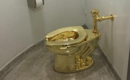 Un vas de toaletă în valoare de 1 mil.£ a fos furat. Din ce material era confecționat