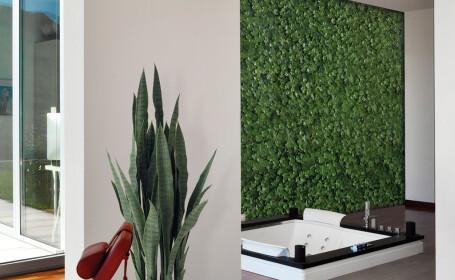 Lasă natura să îți intre în casă cu ajutorul unor plante artificiale!