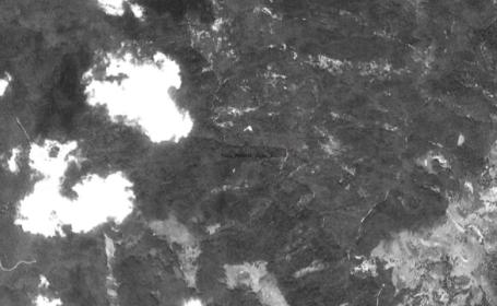 """România """"își pierde"""" pădurile seculare. Ce arată poze """"spion"""" făcute de armata SUA în 1968"""