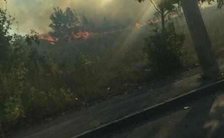 Incendiu de vegetație în București - 2