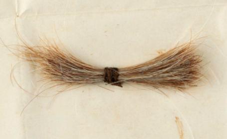 O șuviță de păr a fost vândută la licitație pentru 81.000$. Cui i-a aparținut