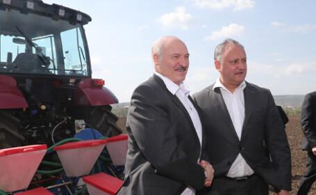 Dodon: Îmi plac foarte multe lucruri pe care le face Lukașenko. Belarus este un exemplu