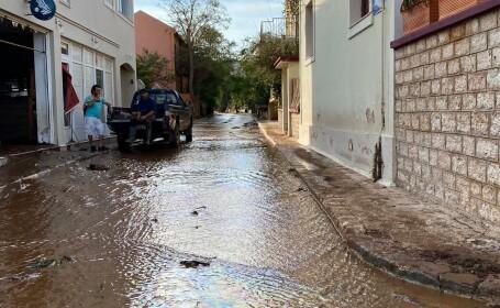 Grecia - Ianos - 3