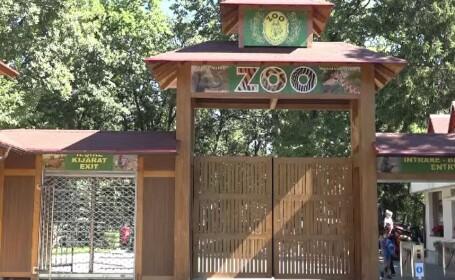 Grădinile Zoologice, punct de atracţie pentru turiştii români în pandemie