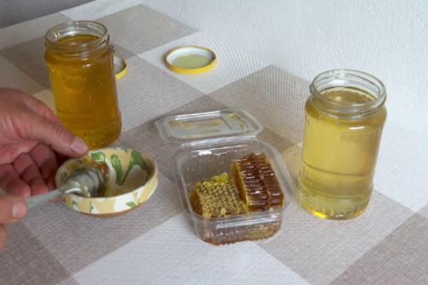 România ocupă un loc fruntaș la numărul de stupi cu albine din UE. Cât costă un borcan de miere polifloră