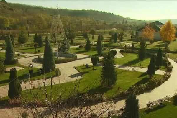 comuna Pestera, parc