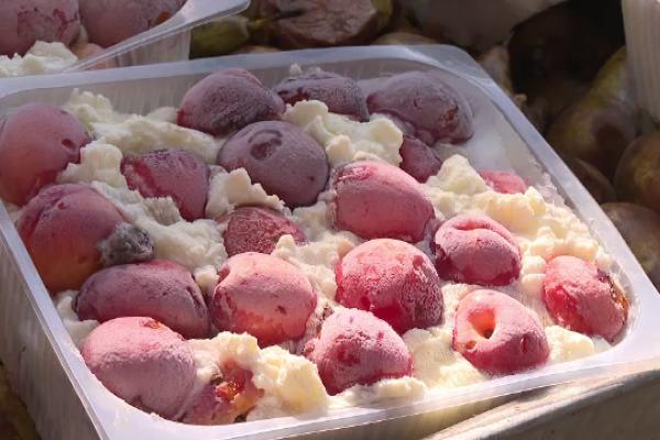 Animalele de la Zoo Galați primesc înghețată și fructe reci pentru a suporta mai bine canicula