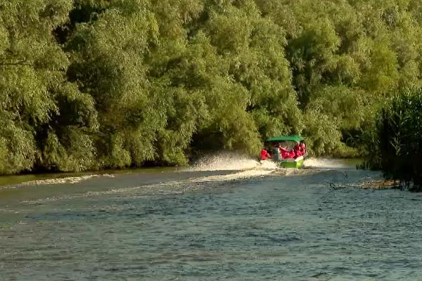 Delta Dunării s-a umplut de iahturi care gonesc cu viteză pe canalele înguste și pun în pericol ecosistemul