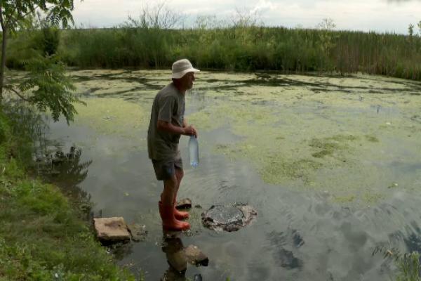 O zonă cu ape terapeutice din Oltenia se rezumă la o baltă în care se bălăcesc rațele sătenilor. Reacția autorităților