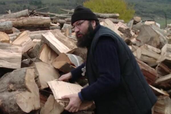 dan damaschin lemne