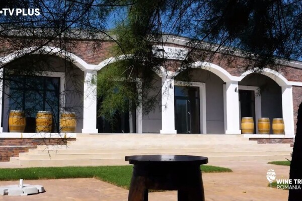 Wine Trips România   Experiențe inedite la crama The Iconic Estate