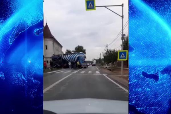 Ce a făcut un șofer de TIR când un câine i-a tăiat calea. VIDEO
