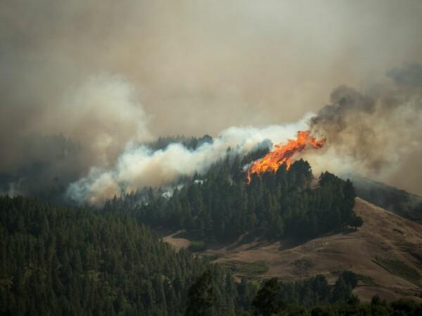 Incendiu de proporții în Gran Canaria. Mii de oameni evacuați. Avertismentul MAE