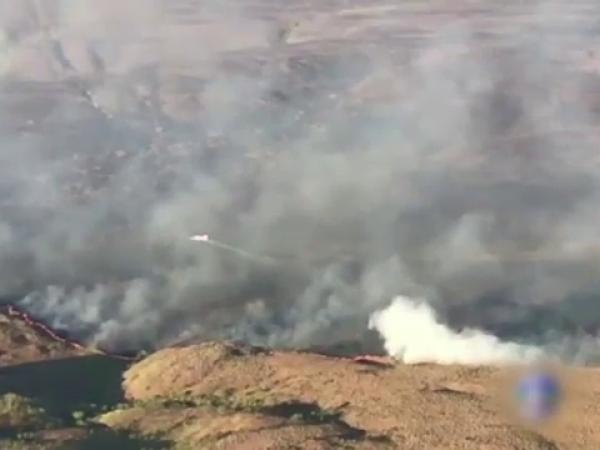 Incendii padurea amazoniana