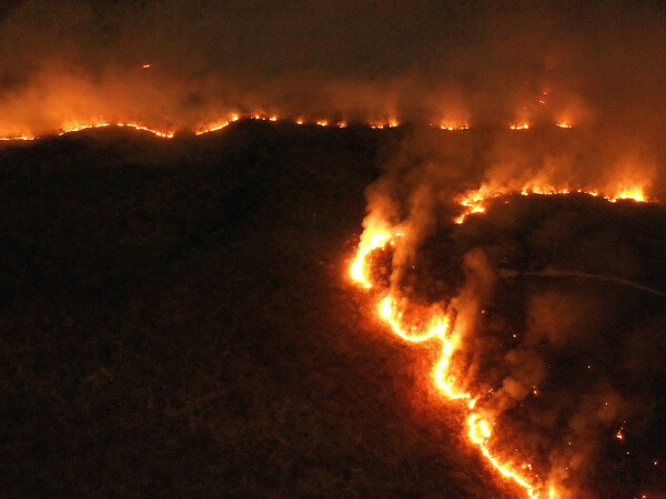 Amazon, Brazilia, incendiu