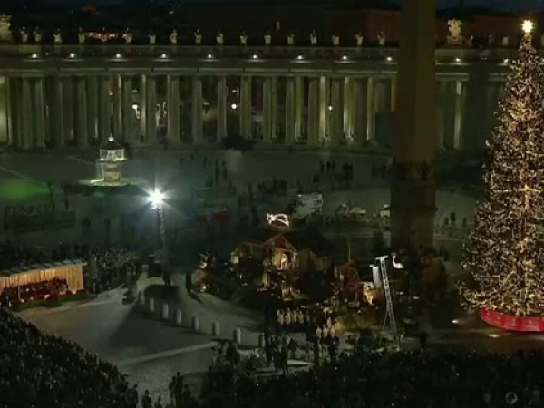 Bradul de la Vatican