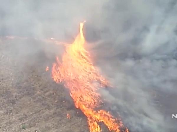 Tornadă de foc în Australia, devastată de incendii