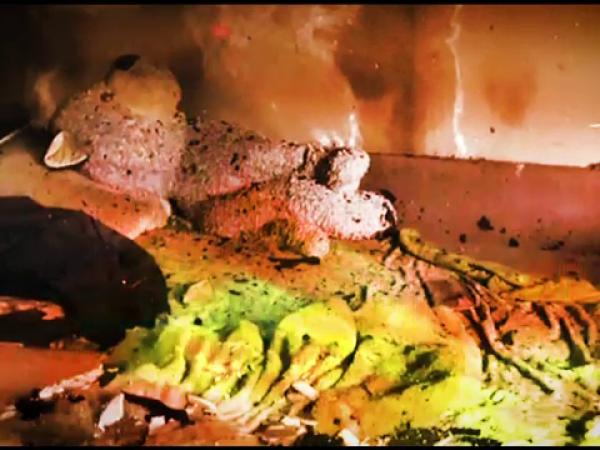 Patru copii au ars de vii încuiaţi în casă, în Timișoara