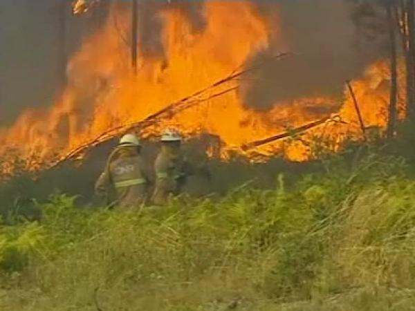 Incendii devastatoare în Portugalia