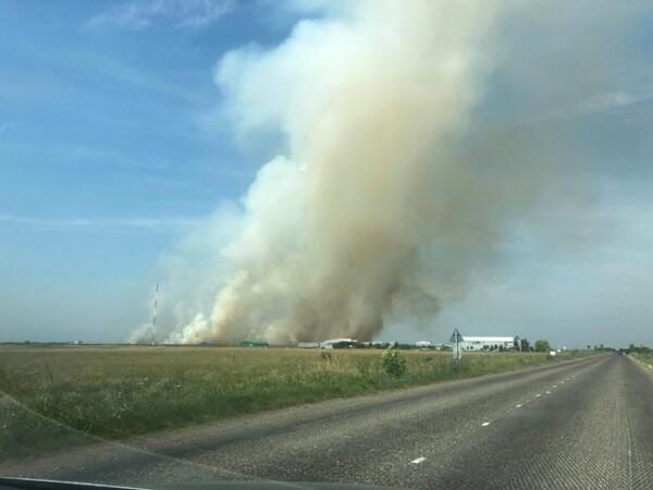 Incendiu pe zeci de hectare lângă Timişoara