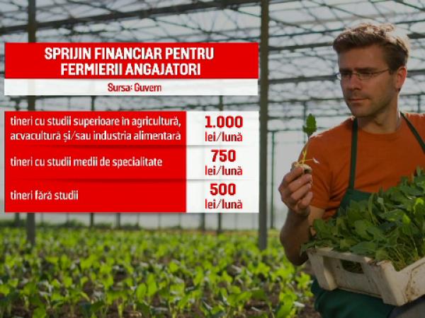 sprijin financiar angajări agricultură