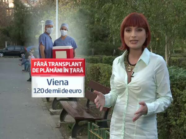 transplanturi