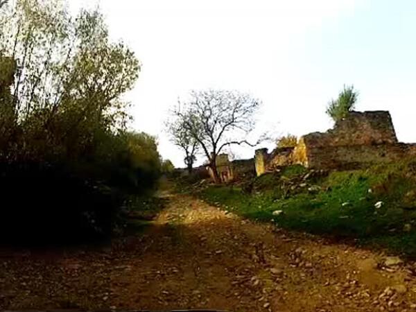 satul parasit Lindenfeld