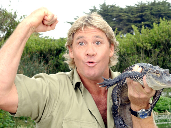 Steve Irwin - Getty