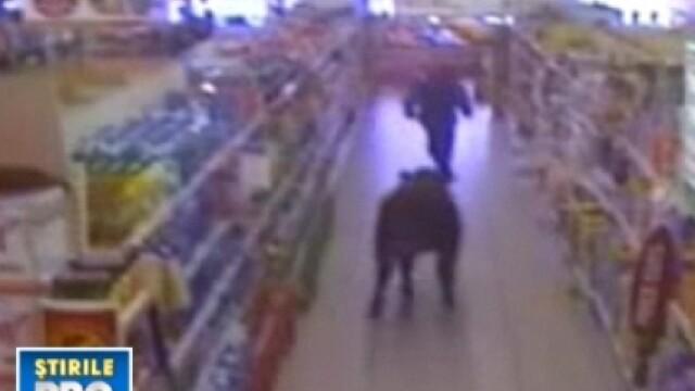 Taur in supermarket