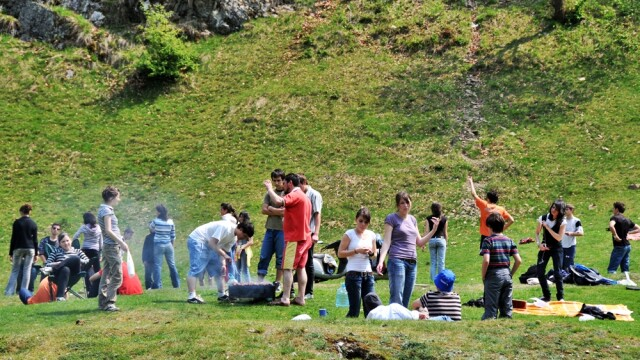 Legea picnicului, tineri la gratar