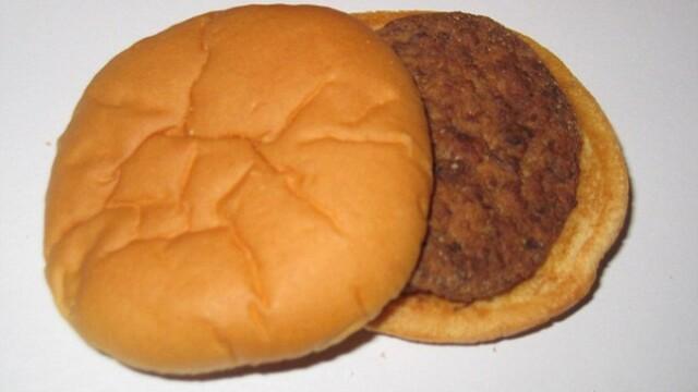 Experimentul bizar al unui american. Cum arata acest hamburger 14 ani mai tarziu. FOTO - Imaginea 1