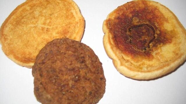 Experimentul bizar al unui american. Cum arata acest hamburger 14 ani mai tarziu. FOTO - Imaginea 2