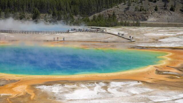 Bizonii din parcul Yellowstone ar putea simti o eventuala eruptie a vulcanului. \